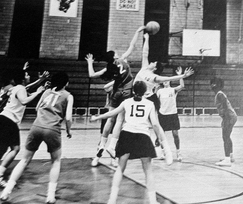 buffalo bulls basketball