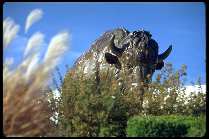 http://digital.lib.buffalo.edu/photo/photos/01009/01009027.jpg