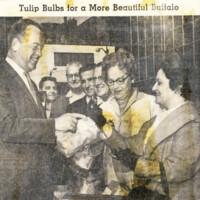 http://digital.lib.buffalo.edu/upimage/LIB-023_282ZontaTulipBulbsBuffaloBeautification19650930_001.jpg