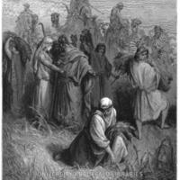 LIB-SC001-Bible-029.jpg